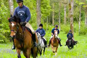 brecon beacons horse riding holiday
