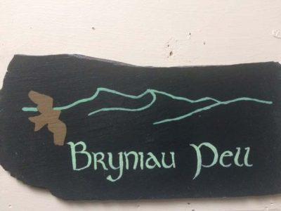Bryniau-Pell-Slate